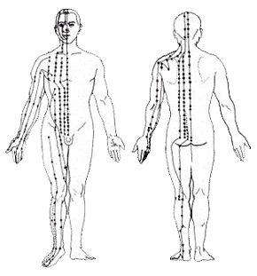 meridianer i kroppen